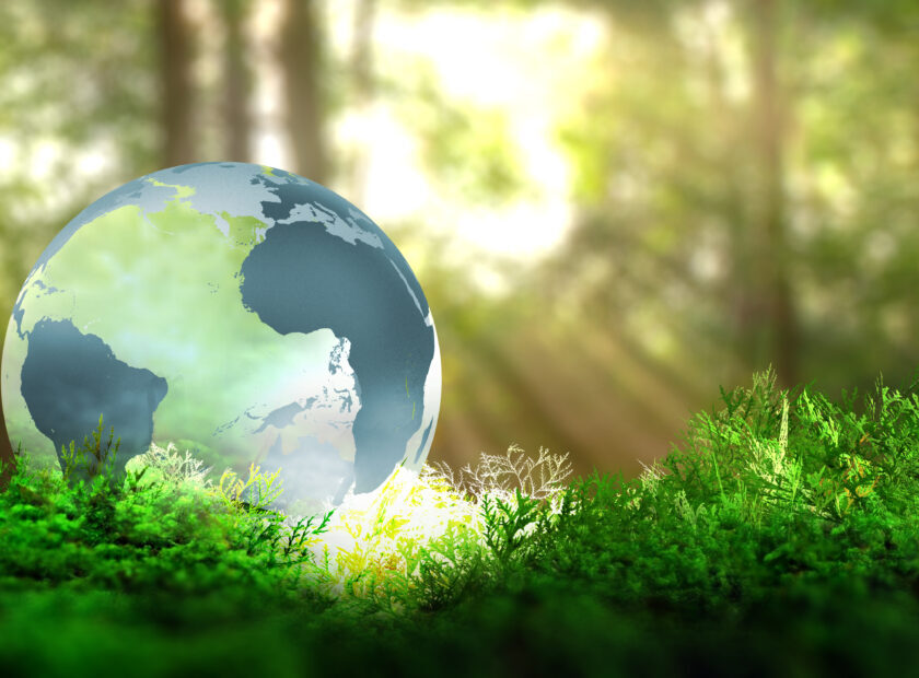 Globe,On,Vegetation,In,Forest.,Ecological,Concept.,3d,Rendering.