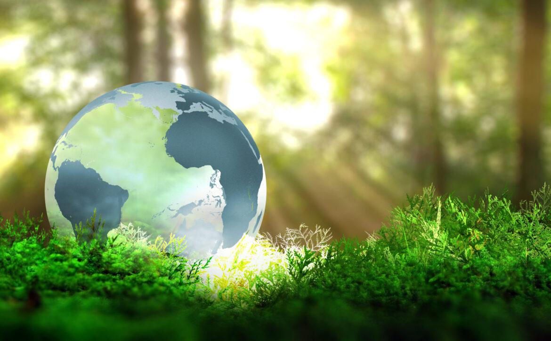 Globe,On,Vegetation,In,Forest.,Ecological,Concept.,3d,Rendering.